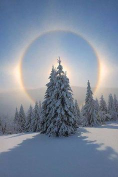 Wonders Of The World December 14, 2016 at 9:30pm ·  Halo in winter - Fichtelberg, Ore Mountains, Saxony, Germany.