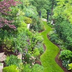"""""""I love the idea of grass being minimal and maximizing the plant space. The wave design of the grass is an adorable and unexpected touch. Also, he plant colors are minimal, which makes it feel more natural to me. THIS would be my ideal backyard escape of my dream home. (Bonus: It wouldn't take long to mow the lawn!)"""" by ksrose"""