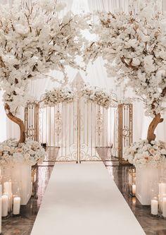 Wedding Locations, Wedding Themes, Wedding Designs, Wedding Venues, Wedding Decorations, Wedding Reception, Wedding Dresses, Floral Wedding, Diy Wedding