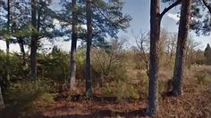 Cheap Land for Sale in Alabama – 3.98 Commercial Acres – Bessemer, AL 35020 *** Credit Cards Accepted *** *** No Closing Costs *** *** Total Price: $5,970 ***  Cheap Land for Sale in Alabama – 3.98 Commercial Acres – Bessemer, AL 35020  Address: 5201 Avenue K, Bessemer, AL 35020  Possible Uses: Gas Station Convenience Store Retail Strip Mall Other  Legal Description: Point of Beginning…  GPS Coordinates: 33.420120, -86.925753  Zoning: Commercial  * Property Taxes: $90.61  * There will be no…