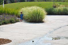 Joel_Weeks_Park-Janet_Rosenberg-Studio-09 « Landscape Architecture Works | Landezine