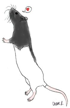 Drawing, black hooded rat, love