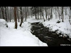 Snowstorm River 60 min/Nature Sounds Winter Snow Sound, Storm Sounds, Like Facebook, Nature Sounds, Cold Weather, School Ideas, Beast, Meditation, Relax