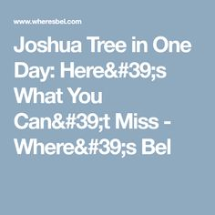 Joshua Tree in One Day: Here's What You Can't Miss - Where's Bel
