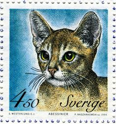 Abyssinian cat - Postage stamp designed by Eva Jern after photograph and engraved by Piotr Naszarkowski, issued by Sweden on March 18, 1994