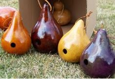 Gourd Bird Houses - after my gourds dry!