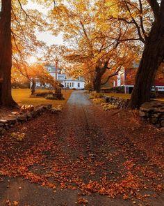 """autumncozy: """"By Kiel James Patrick """""""