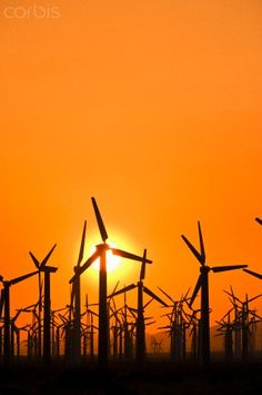 Wind turbines at sunset, near Palm Springs, California photo by David Nunuk/Visuals Unlimited/Corbis