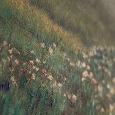 A detail from #ronelhuman's exquisite Pringle Bay' painting.
