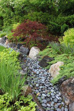 Dry streams are a unique landscaping idea that incorporate natural rock elements and address poor drainage issues. They can also slow and capture runoff offering a practical and stylish solution for your garden. This article explains how to build a dry st River Rock Landscaping, Landscaping With Rocks, Front Yard Landscaping, Backyard Landscaping, Landscaping Ideas, Backyard Ideas, Dry Riverbed Landscaping, Steep Hillside Landscaping, Backyard Stream