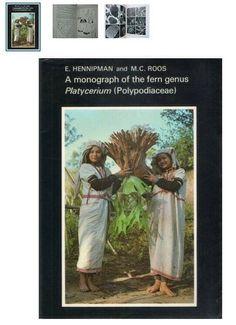 Staghorn Fern Book