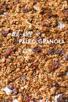 A satisfying, crunchy granola without gluten, grains or nuts! via thebalancedberry.com