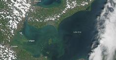 Lake Erie could face more toxic blooms as the warming climate fuels more downpours that wash bloom-fueling fertilizers into the lake.