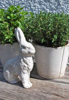 diy cement planters i can use all those lovely shells from the beach do it yourself ideas. Black Bedroom Furniture Sets. Home Design Ideas