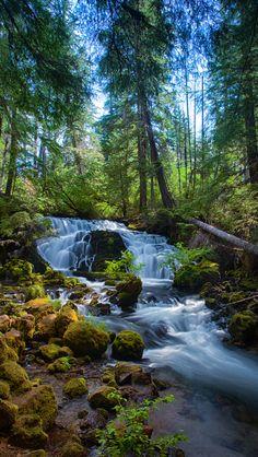 Pearsoney Falls Source Flickr.com
