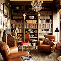 The Enchanted Home: libraries I want this room just not such dark decor