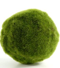 """5""""  Artificial Moss Balls $699 each/ 3 for $6 each      wrap a ribbon around it and hang them from chairs along the aisle. Or give them to flower girls in place of bouquets"""