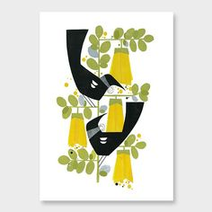 Two Tuis Kowhai Art Print by Holly Roach - endemicworld Poster Prints, Framed Prints, Posters, Pick Art, Flower Silhouette, Nz Art, Bird Illustration, Illustrations, Mid Century Art