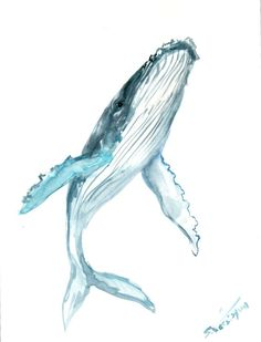 Humpback Whale Original watercolor painting 12 X 9 by ORIGINALONLY