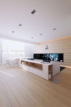 Canapé avec meuble de rangement dans l'appartement 100M