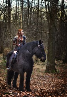 The Elder Scrolls Online cosplay by emilyrosa on DeviantArt The Elder Scrolls, Elder Scrolls Online, Lightning Cosplay, Gnome, Sea World, Horse Riding, Fantasy Creatures, Pet Birds, Fairy Tales