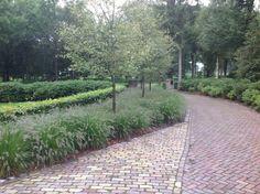 Oprit, tuin aangelegd door hoveniersbedrijf Martin Buijtels - Bladel