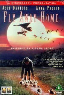 "Wonderful story, heartwarming, good mixed gender appeal, and haunting music all make ""Fly Away Home"" a terrific family movie!"