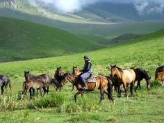 A horse breeder in the mountains around the Suusamyr Valley, Kyrgyzstan