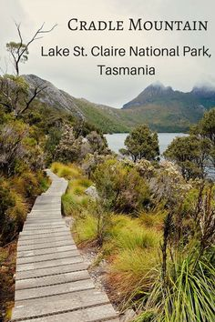 Cradle Mountain St. Claire National Park is one the most amazing and most visited national parks in Tasmania. Here are the best Cradle Mountain walks...