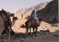 Mt. Sinai, Egypt    At the base of Mt. Sinai, Egypt. Approaching St. Catherine's Monastery. 1996.