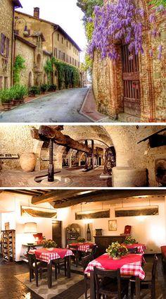 wine museum torgiano italy - Google Search