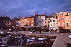 porto dei pescatori di Rovigno