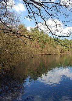 Heathlake in Crowthorne, Berkshire. Love this place :)