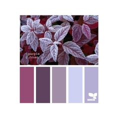 Design-seeds ❤ liked on Polyvore featuring backgrounds, colors, color palette…