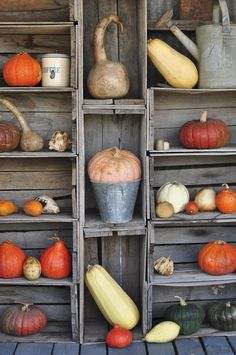 Exterior fall display. Take the usual pumpkin display and make it an artistic statement