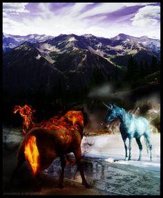 battle of duality by whenirun on DeviantArt