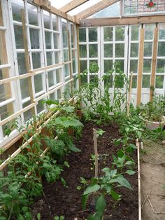 Home-made, Low Cost Glass Greenhouse from Recuperated Windows- for the slab beside the garden