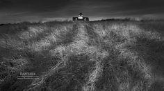 Black-and-white Windy Septemberish morning at Coast Guard beach. Dapixara Cape Cod photography art.