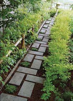 paver path veggies on fence line, herbs line yard-