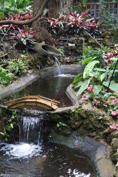 Sunken Gardens, St. Petersburg, Florida