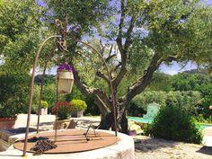 Bastide de Fontvieille - Mediterranean Sea -  Bed & Breakfast - Chambre d'hôtes South of France - Saint Cyr sur Mer