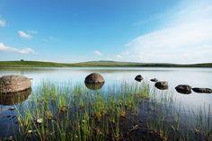 Auvergne sauvage : Dans le Puy-de-Dome, non loin du petit village de La Godivelle, la Réserve naturelle nationale des sagnes de La Godivelle est composée de 24 hectares de tourbières et de prairies humides ponctuées par les eaux paisibles du Lac-d'en-Haut et Lac-d'en-Bas. © CRDT Auvergne-tourisme.info - David Frobert