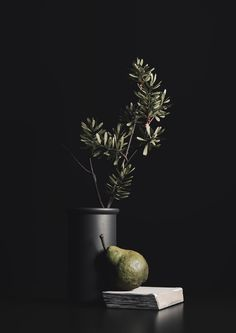 Personal Work, Still Life. 3D Visualization with Corona Renderer