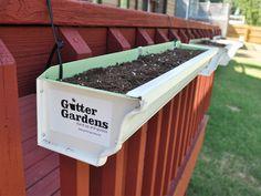 """5"""" Gutter Garden"""
