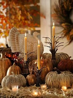 There are lots of Halloween decoration ideas that don't include skulls and mangled meat men. Should you do nothing but get Halloween lights that's plenty. Random Halloween decorations l… Fall Home Decor, Autumn Home, Holiday Decor, Thanksgiving Centerpieces, Thanksgiving Decorations Outdoor, Pumpkin Centerpieces, Autumn Decorating, Decorating Ideas, Interior Decorating