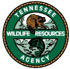 Bear elective adventure a bear goes fishing on pinterest for Lifetime hunting and fishing license tn