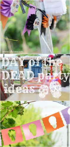 Day of the Dead party ideas   lollyjane.com