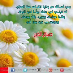 #goodmorning #Jordan #amman #PicOfTheDay #صباح_الخير  #صباح_الخير_يا_عرب