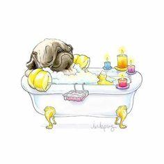 Pug bath.