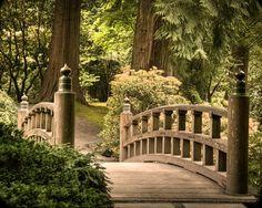 Japanese garden photograph - wooden bridge zen buddhism buddha path trail peaceful - A Quiet Joy - oth0001